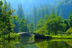 hidden villa between trees/Summer Landscape