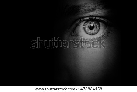 hidden  woman's face background  beautiful eye detail