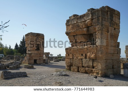 hierapolis antiquities and a cat #771644983