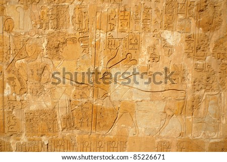"Hieroglyphic carvings in the walls at of an Egyptian ancient temple.Early ""Hieroglyphs"" were logograms representing words using graphical figures such as animals, objects or people."