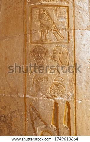 Hieroglypic carvings and paintings on wall at the ancient egyptian temple of hatshetup in Luxor