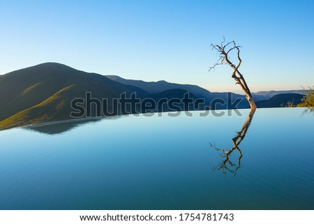 Hierve el Agua: peace and calm by one of the most beautiful natural infinity pools in the world with water mirror effect and a solitary tree in focus. Foto stock ©