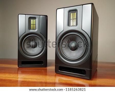 HiFi Stereo Loudspeaker