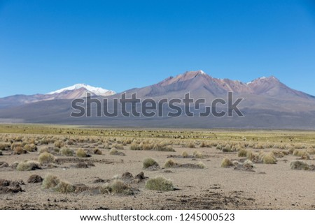 High Andean tundra landscape in the mountains of the Andes. The weather Andean Highlands Puna grassland ecoregion, of the montane grasslands and shrublands biome. #1245000523