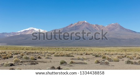 High Andean tundra landscape in the mountains of the Andes. The weather Andean Highlands Puna grassland ecoregion, of the montane grasslands and shrublands biome. #1334438858
