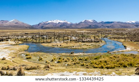 High Andean tundra landscape in the mountains of the Andes. The weather Andean Highlands Puna grassland ecoregion, of the montane grasslands and shrublands biome. #1334439425