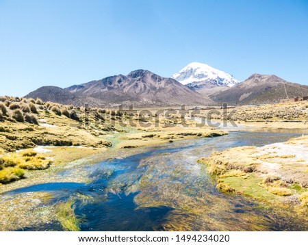 High Andean tundra landscape in the mountains of the Andes. The weather Andean Highlands Puna grassland ecoregion, of the montane grasslands and shrublands biome. #1494234020