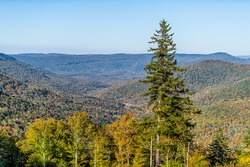 High angle aerial view on West Virginia Allegheny mountains overlook in autumn fall with foliage and one pine tree with sunlight at Highland scenic highway