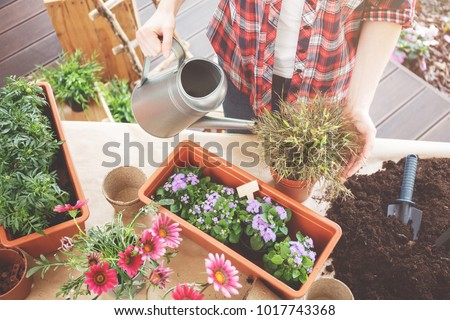 High angle photo of terrace table with pots and soil left after replanting flowers #1017743368