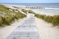 High angle view from the boardwalk sloping down to the 160 poles on the beach of Petten which reflects the struggle of the former town against the sea