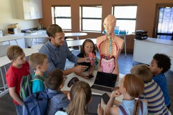 High angle view of a Caucasian male teacher using a human anatomy model to teach a diverse group of elementary school children about human organs during a biology lesson, the children sitting in a