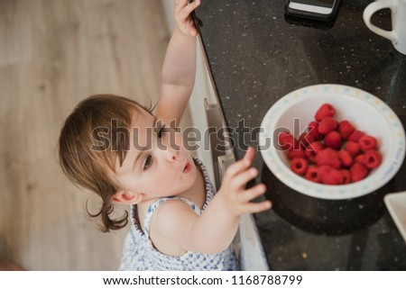 High angle view of a little girl standning in a kicthen and reaching up over the kitchen counter to grab some raspberries.