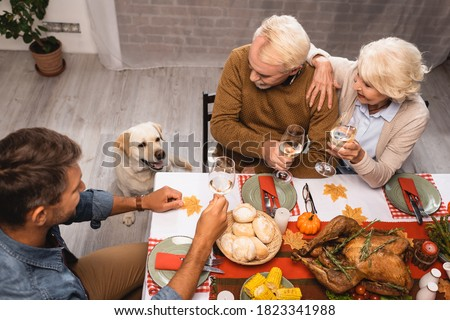 high angle view of golden retriever near family holding glasses of white wine during thanksgiving dinner