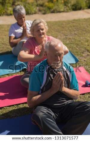 High angle view of group of active senior people performing yoga on yoga mat in the park #1313071577