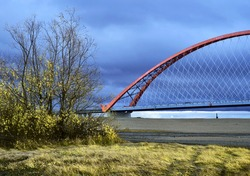 High arched road bridge with cable-stayed net across the Great Siberian river is a landmark of Novosibirsk. Golden grass, autumn leaves, blue cloudy sky. Color contrast. Russia, 2018