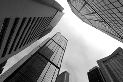 High business buildings, black and white