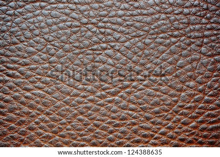High detailed leather surface