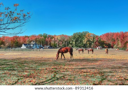High Dynamic Range landscape of a rustic horse stable in Maryland during Autumn