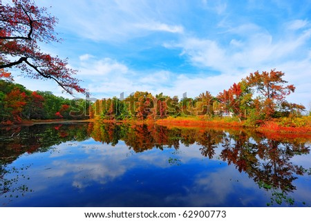 High Dynamic Range photo of Autumn colors reflecting in a pond next to the Chesapeake Bay in Maryland