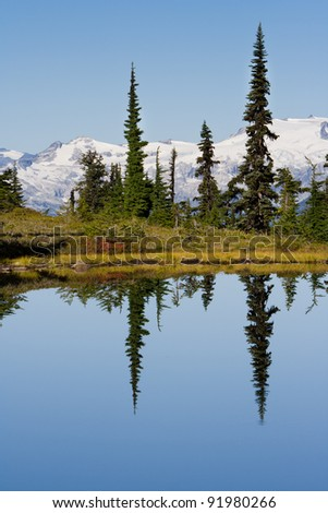 High Ground Reflection in Garibaldi Provincial Park