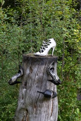 High heels and shoes stapled to treetrunk in a forest in Sweden (1 van 1)