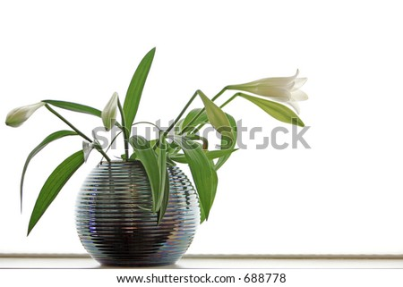 high key flower in vase