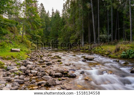 High mountain wild river in national park forest, peacefull fall spring landscape  #1518134558