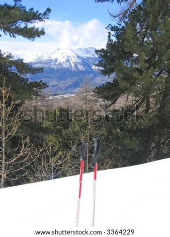 High mountain with fir trees and two skipole -  Les Orres - Alps - France.