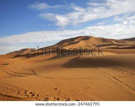 High orange sand dunes in Sahara desert in the evening #247462795
