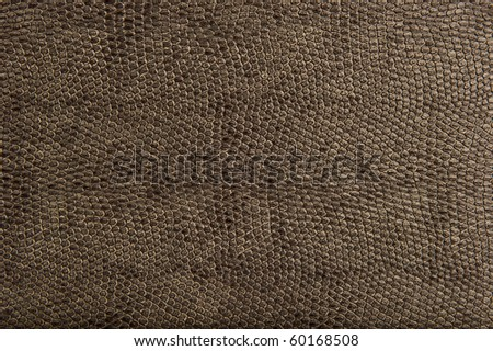 High Quality Animal Reptile Skin Patten and Texture