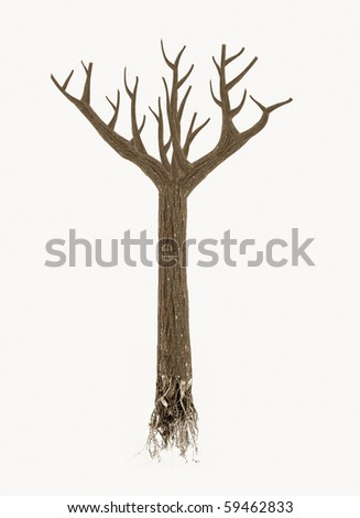 high quality dead tree with roots isolated on white