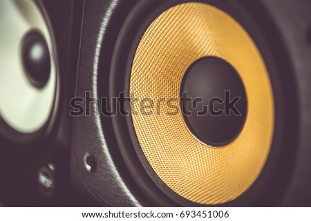 High quality loudspeakers in dj shop.Buy hifi sound system for sound recording studio.Professional hi-fi cabinet speaker box on sale.Audio equipment for record studios and concert stage