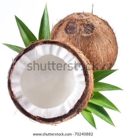 High-quality photos of coconuts on a white background. - stock photo