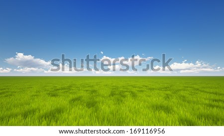 High quality render of a green field with the clear blue sky and clouds at the horizon line