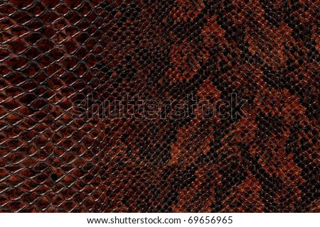 High quality snake skin pattern.