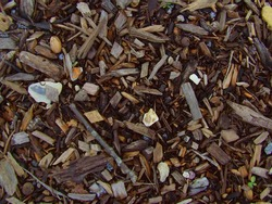 High quality woodchip texture, good background.