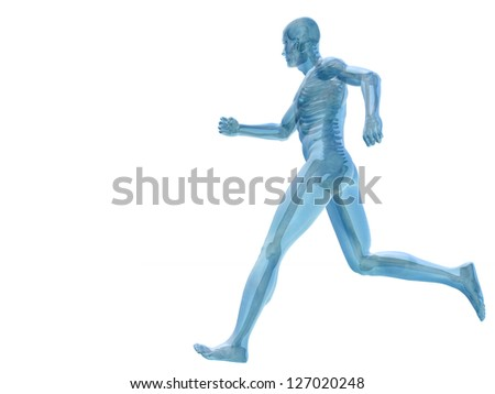 High resolution conceptual man anatomy illustration on white background for medical,medicine,he alth,rheumatism,ost eoporosis,muscle,ac he,arthritis,inflam mation,painful or bones design - stock photo
