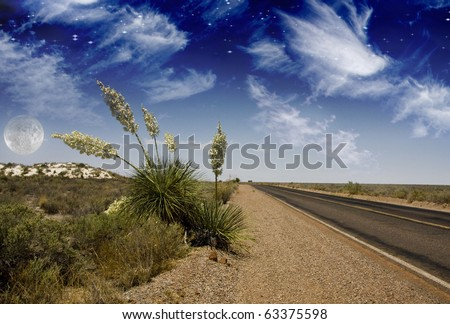 High Resolution Desert Road White Sands New Mexico