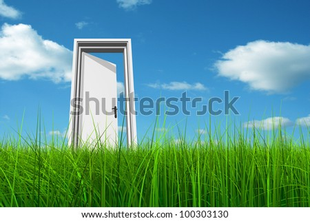 High resolution green, fresh and natural 3d conceptual grass over a blue sky background, a opened door at horizon ideal for religion,home,recre ation,faith,busines s,success,oportunit y or future - stock photo