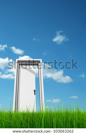High resolution green, fresh and natural 3d conceptual grass over a blue sky background, a opened door at horizon ideal for religion,home,recreation,faith,business,success,oportunity or future