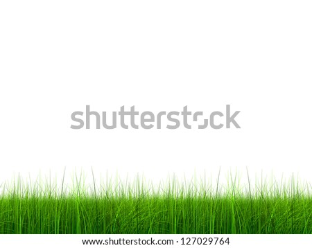 High resolution green,fresh and natural 3d grass field or lawn isolated on white background, ideal for nature,environment,sport,soccer,golf,spring,summer,agriculture,eco or garden designs