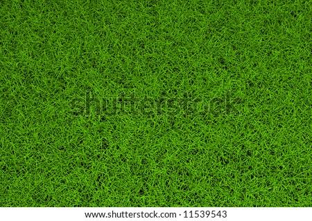 high resolution green grass background - Shutterstock ID 11539543