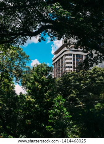 High rise residential building obscured by lush tropical rainforest vegetation - ideal for a book cover as plenty of copy space. Captured in Belo Horizonte, Brazil