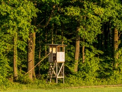 High seat for hunters for wildlife observation