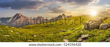 High Tatra mountain summer landscape. meadow with huge stones among the grass on top of the hillside near the peak of mountain range at sunset #524596420