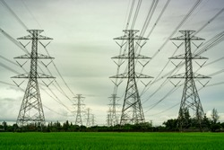 High voltage electric pylon and electrical wire at green rice field and tree forest. Electricity pylon with overcast sky. High voltage grid tower with wire cable.  Power and energy concept. Landscape.
