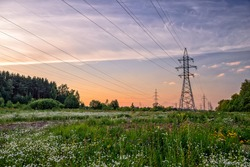 High voltage power line in flower meadow over sunset sky