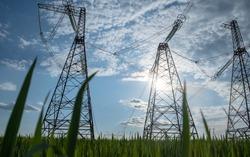 high voltage power line with green grass. green energy concept of high voltage lines. high-voltage pylon