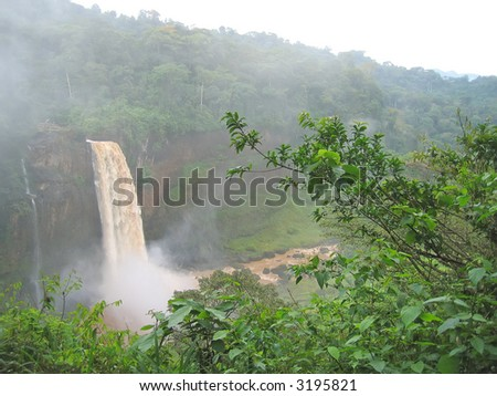 High waterfall in the tropical jungle - Cameroon - Africa.