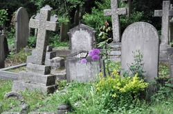 Highgate Cemetary, London. In England you´ll find this fairy tale memorial with its overgrown tombstones. The purple flowers are Alliums. Looking as picked from a scary movie.